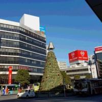 吉祥寺駅北口クリスマスツリー2016