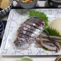 お刺身と合格舞茸のおみそ汁の夜ごはん