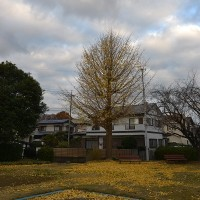 12月7日、午前7時過ぎの空模様