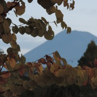 今朝の富士と日の出