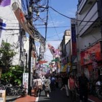 亀戸天神社の藤