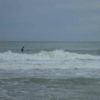 1692日目 秋の湯の浜海岸
