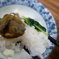 かき塩ラーメン+かきめし@麺や 福座
