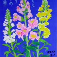 3月の絵手紙『金魚草』をお届けします