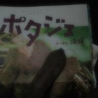 東京から沖縄へ   秋の味覚は空をこえ~