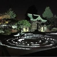 京都 祇園四条 #高台寺もみじライトアップ #プロジェクションマッピング