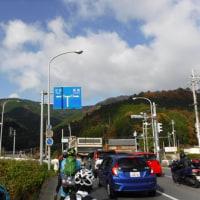 京都 紅葉甘味ライド