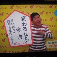 桜燕日記 May 16, 2017