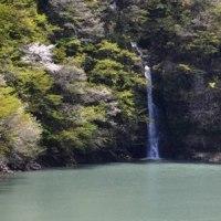 5/25 🚃JR東日本がおもしろい試み 『風っこ』号を走らせる🚃