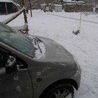 昨日は雪!