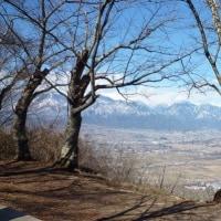 福寿草を見に山へ