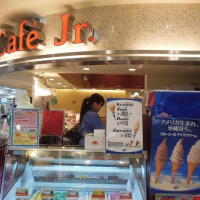 ブルーシールソフトクリーム<チョコレート>300円