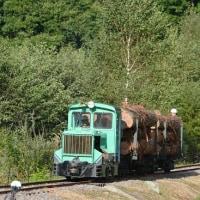 10月9日撮影 王滝森林鉄道フェステバル その12 運材列車到着!