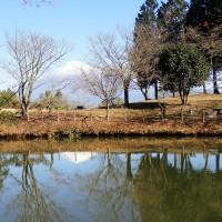 はたご池からの富士山
