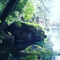 氣が悪い場所への学びースピリチュアルトートタロットベーシック講座(野外編)