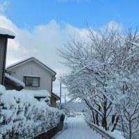 雪道に立ち往生!<^!^>!