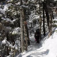 2/15(水) 北八ヶ岳『北横岳・三ツ岳・縞枯山荘』冬のハイキング
