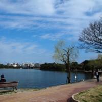 水と緑のオアシス 大濠公園