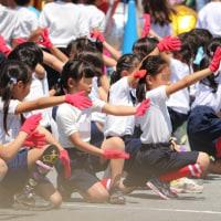 運動会〜結婚式〜運動会打ち上げ〜第12回湘南国際マラソンエントリー