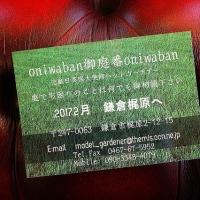英国大使館元ヘッド・ガーデナーの濱野義弘さんが再び拙宅の芝生を観察@鎌倉七里ガ浜