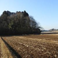 地元の谷地に行ってきました -1/2- (平成29年01月22日)。