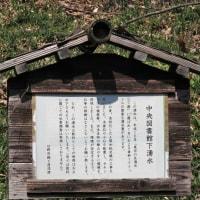 玉川上水に親しむ会の下見① 日野の湧水と用水(豊田から平山方面)