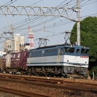 EF65 2117牽引75レ(6月23日撮影)