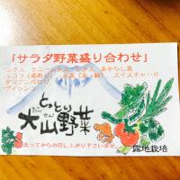 弥生 梅に大山野菜