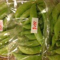 奈良朝市の野菜「スナップえんどう」入荷しました♪