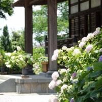 熊谷 能護寺