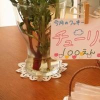 くまさんのぼうけん4/25