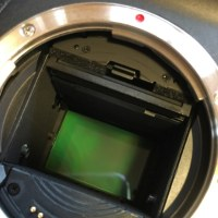 EOS5D センサークリーニング^ ^