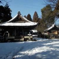 雪の中の散歩 東近江市「野々宮神社」 (1/18)