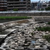 広瀬川渇水 D40