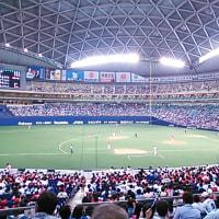 野球観戦 中日vs広島