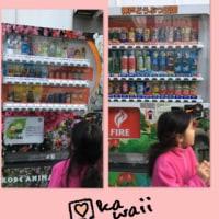 自動販売機(∩・∞・∩)