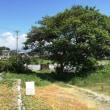 前浜砲台跡