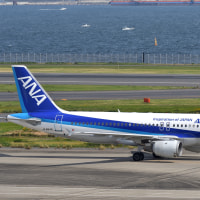 伊丹のみなさん!ANAのA320、羽田ではまだまだ元気です! (10月23日 羽田空港)
