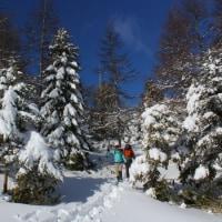 寒波でスキー場は最高 スキー・スノーシューなど休日リフレッシュ