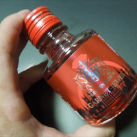 ハウステンボスの梅酒①