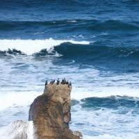 冬晴れの能登の海岸
