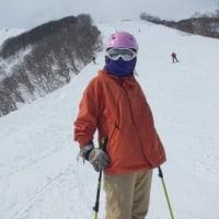 今シーズンのスキー旅総括