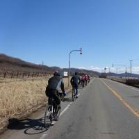 穏やかな一日 TBPサイクリング&タンチョウ