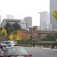 「我々は京都の高校で部落差別を目にした」と西田昌司さんと有田芳生さんが意気投合も採決先送り、割販法改正案、スキーバス法案は参委可決[きょうの国会]