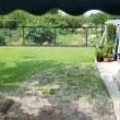 芝生の植え付け作業