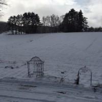雪が積もりました。1/9