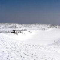 5月6日 残雪の八幡平自然観察会