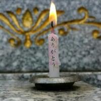 ◆明日3/19・明後日3/20は連休です◆