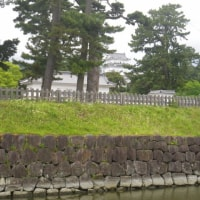 箱根・小田原旅行 二日間で14Km程度