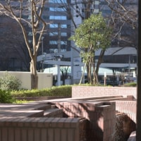 新宿高層ビル街・水の風景 新宿センタービル